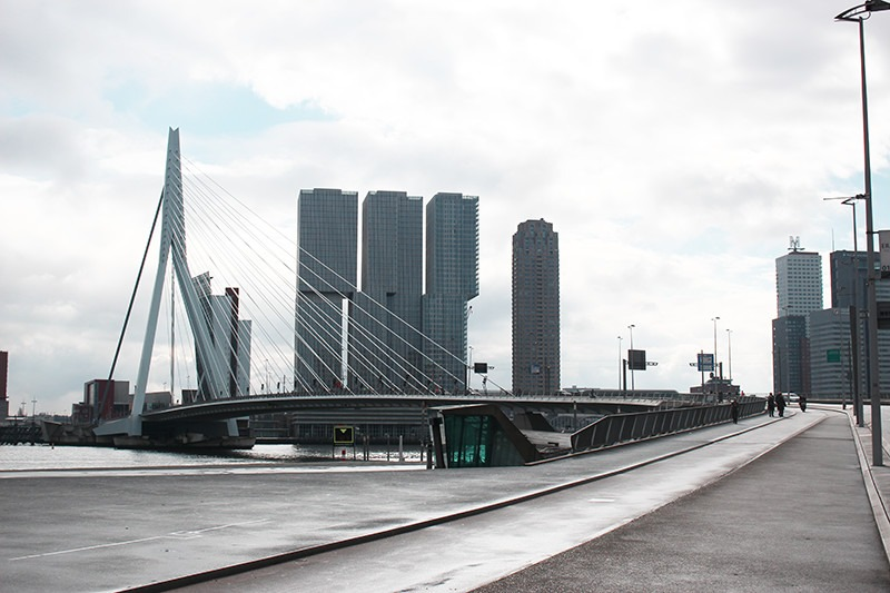 What to do in Rotterdam in one day