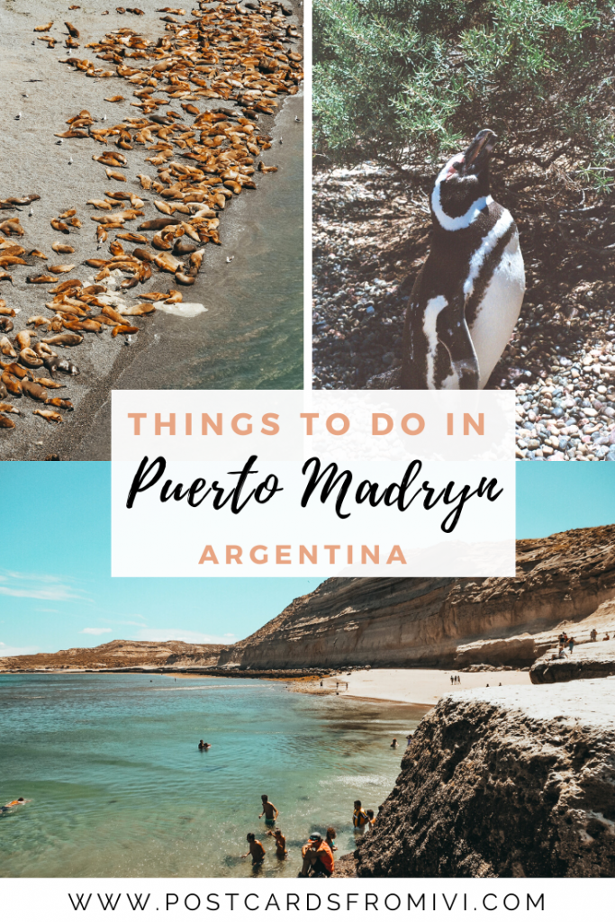 Things to do in Puerto Madryn, Patagonia Argentina's gem