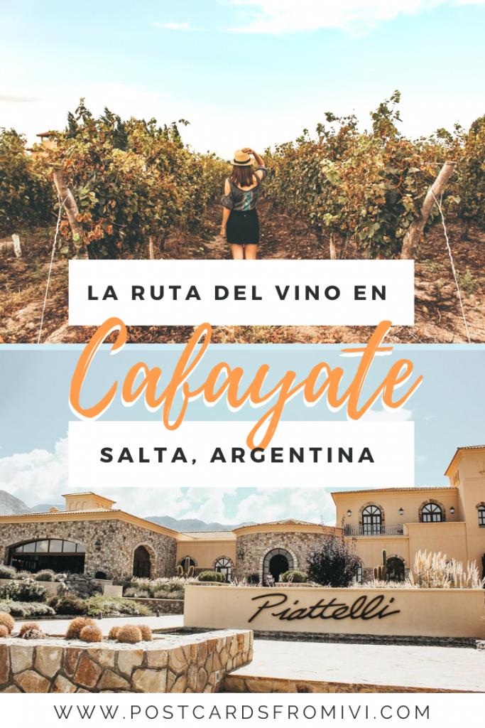 Bodegas en Cafayate: Visita a Bodega Piattelli Vineyards
