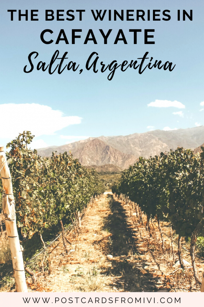 Wine tasting in Cafayate: Bodega Piattelli Vineyards